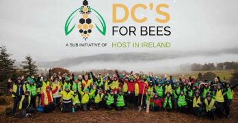 About 100 members of Host in Ireland planted 2,000 trees in County Wicklow as part of its new DCs for Bees initiative. (Photo: Host in Ireland)