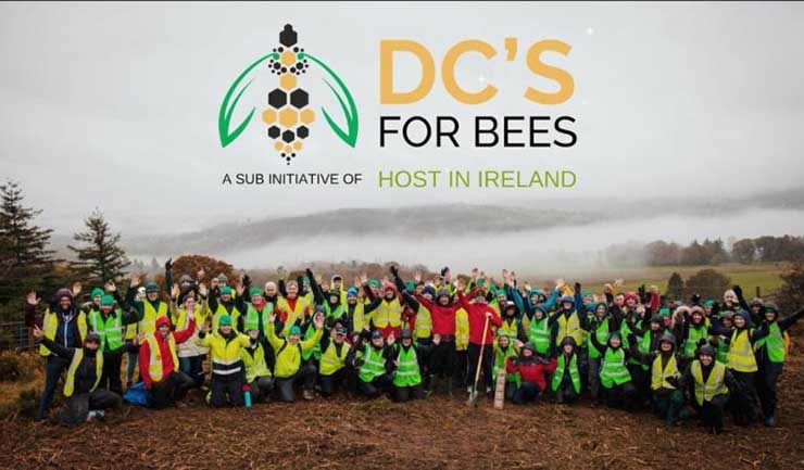 In Ireland, Data Centers Team Up to Save the Bees